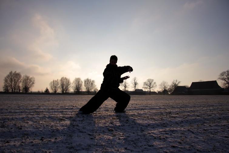 Winter at Farm #4 - Kung Fu - by Dennis Riebenstahl