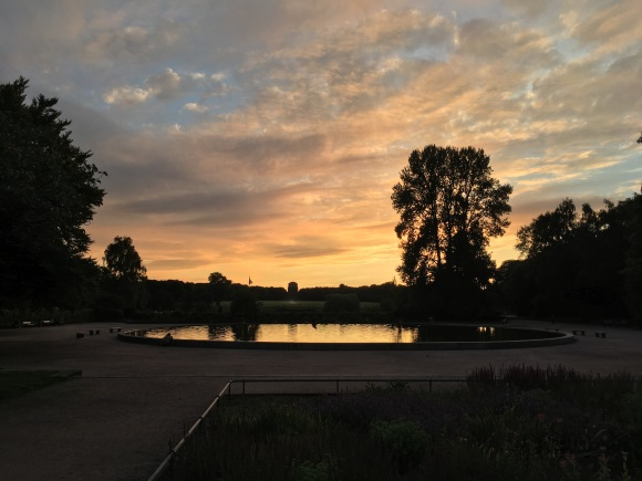Sunset at Hamburg's Stadtpark — Visuelles Logbuch — Street Photography by Dennis Riebenstahl