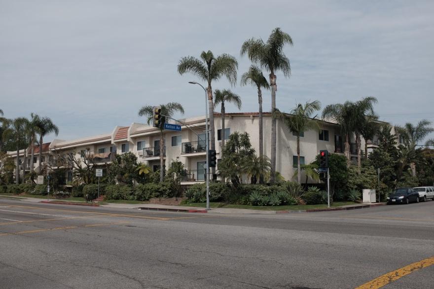 Palms Street Corner, Kelton Avenue – Los Angeles
