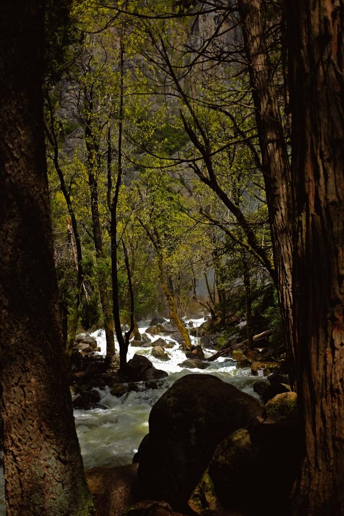 Bridalveil Falls Creek – Yosemite National Park
